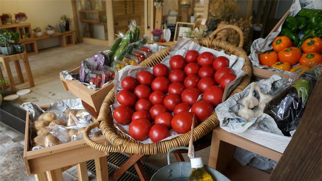 北海道産地直送 有機トマト