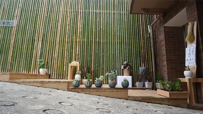 bamboowall660