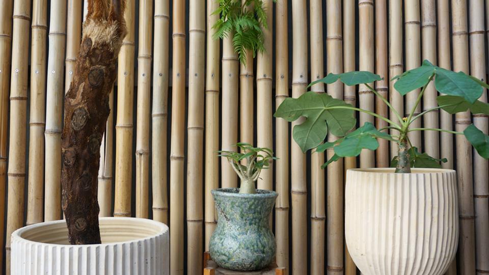 花器 大鉢 小鉢 フラワーベース
