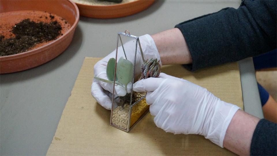 ステンドグラス多肉寄せ植えテラリウム ワークショップ