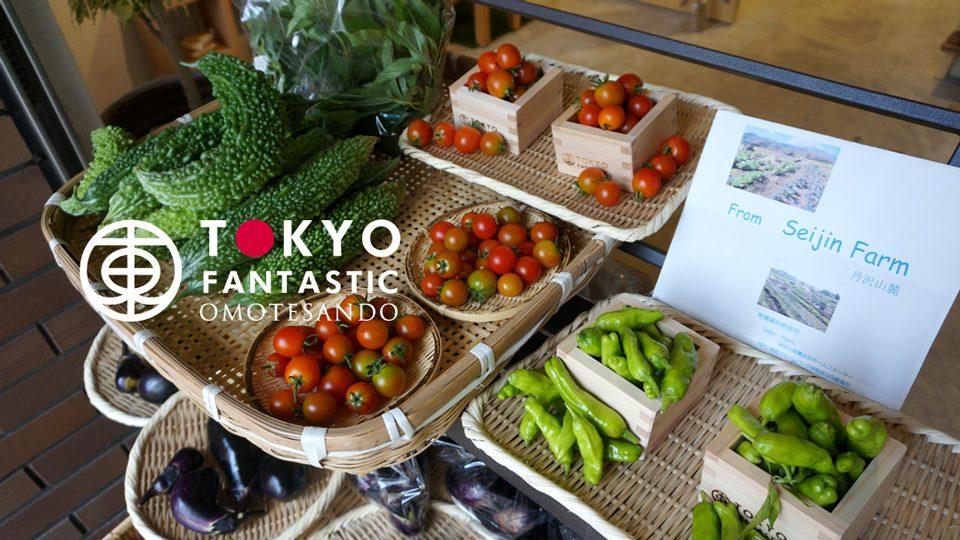 今朝5時とれたて!丹沢山麓・無農薬栽培 Seijin Farm 夏野菜入荷しました!