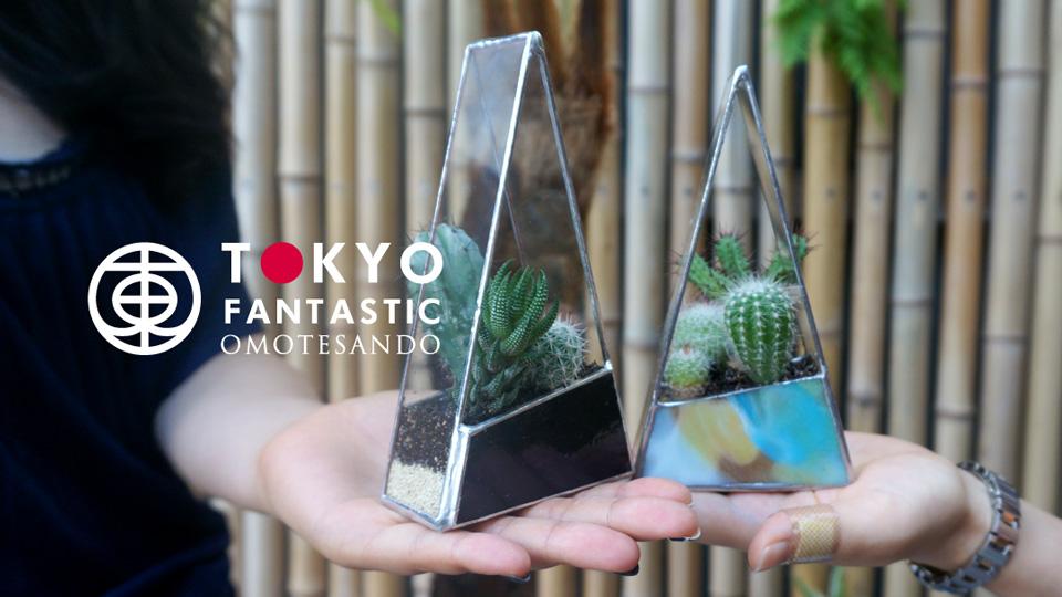 9/18(日)Glass & Art MOMO × Tida Flower サボテンテラリウムワークショップ開催!