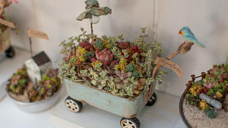 くるみガーデンの小鳥の花車