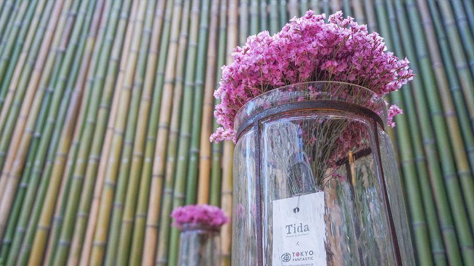 青竹の竹垣と、サマーチェリー。